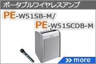 PE-W51S-M/PE-W51SCD-M用ワイヤレスアンプ